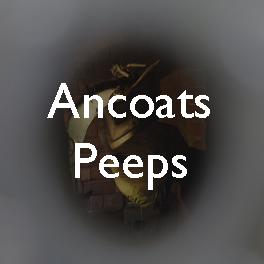 12 Ancoats peeps copy