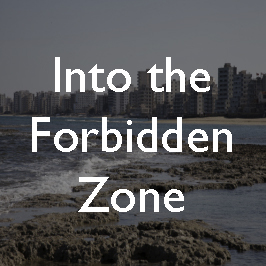 26-forbidden-zone copy