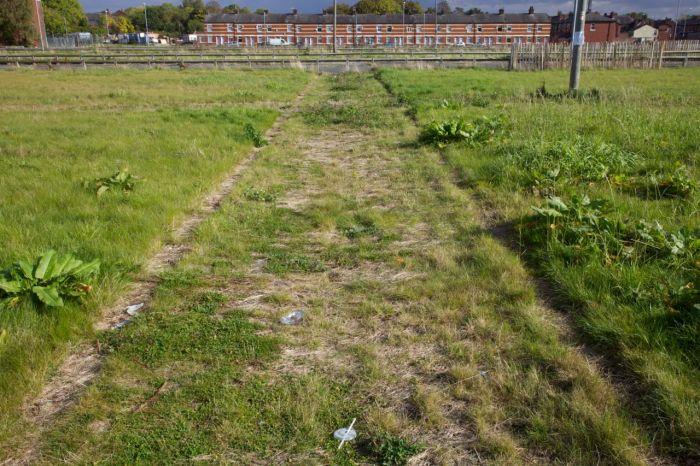 Overgrown cobbled passageway, Openshaw, Manchester